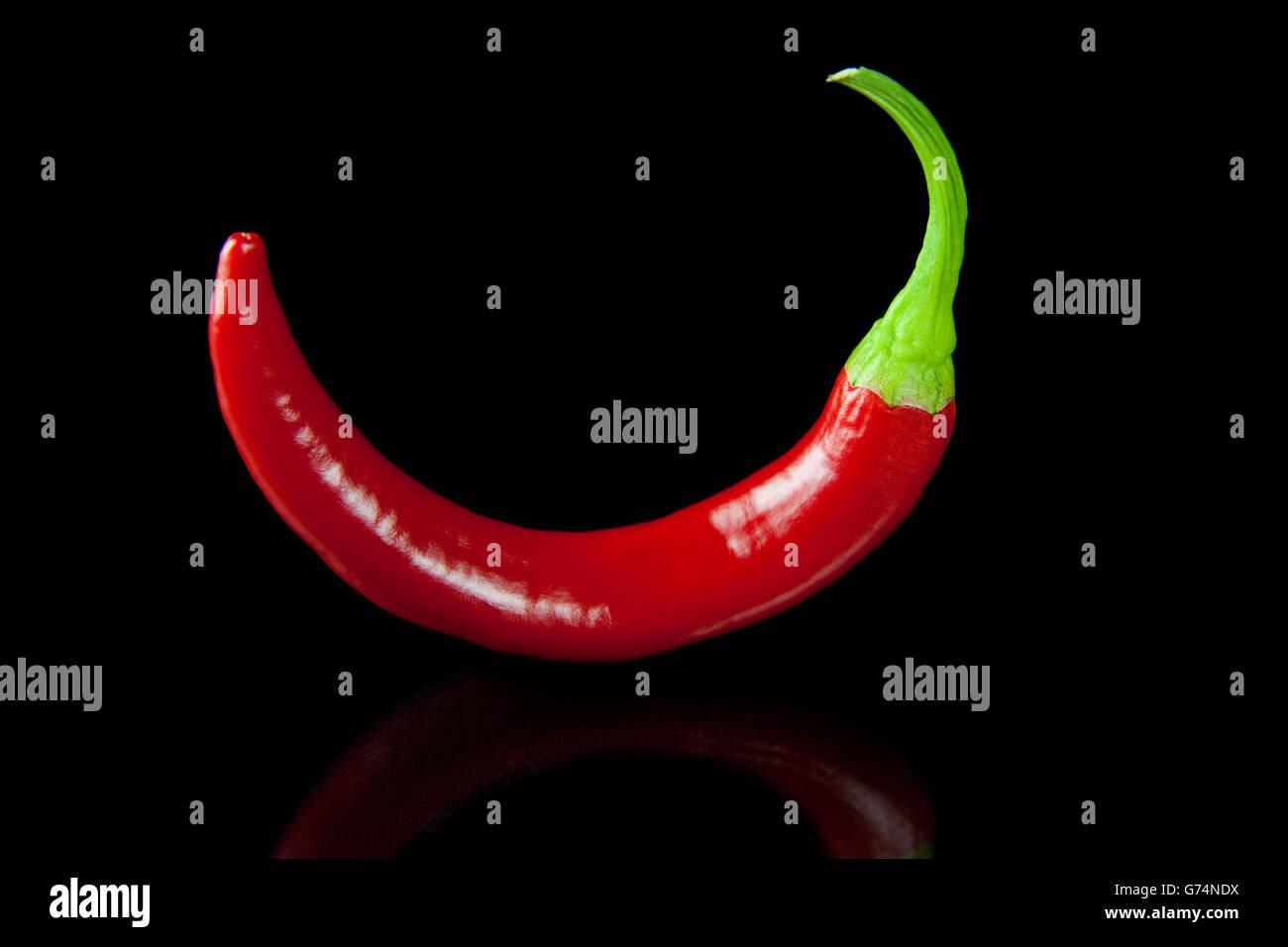 Red hot chili pepper Photo Stock