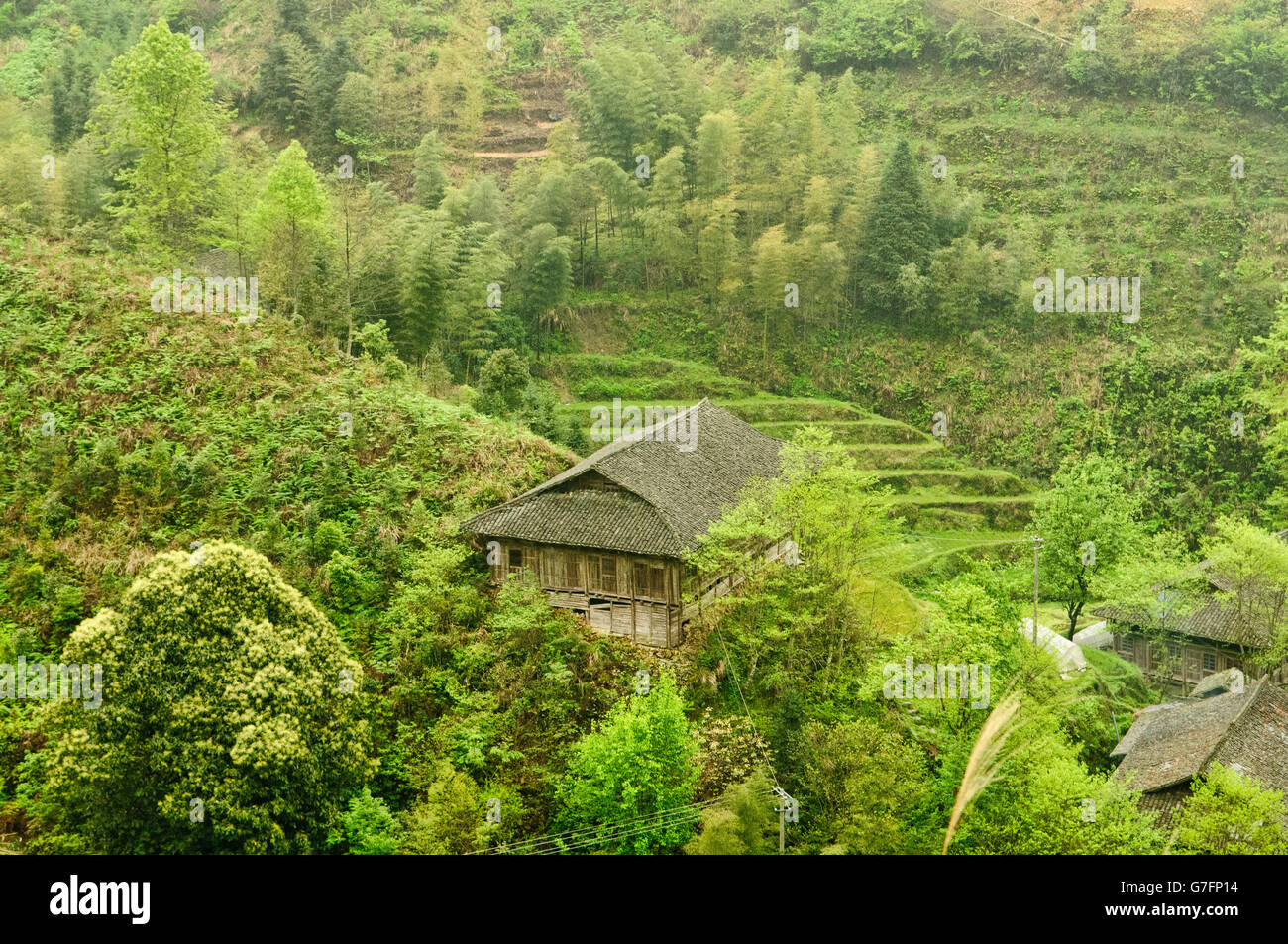 Maisons traditionnelles de la minorité Yao Ping'An, près de la région autonome du Guangxi, Chine Photo Stock
