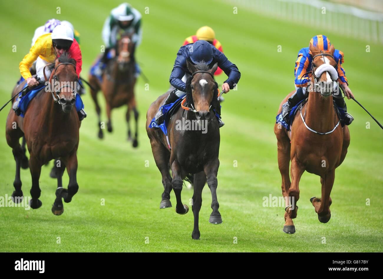 Courses de chevaux irlandais Tattersalls guinées Festival - Jour 2 ...
