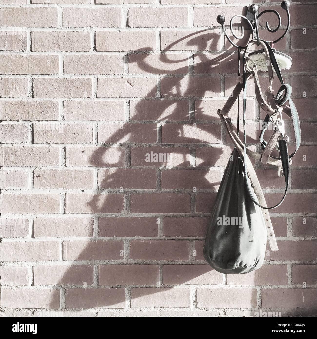 l'équitation bride, le pinceau et sur sac crochet sur mur de brique