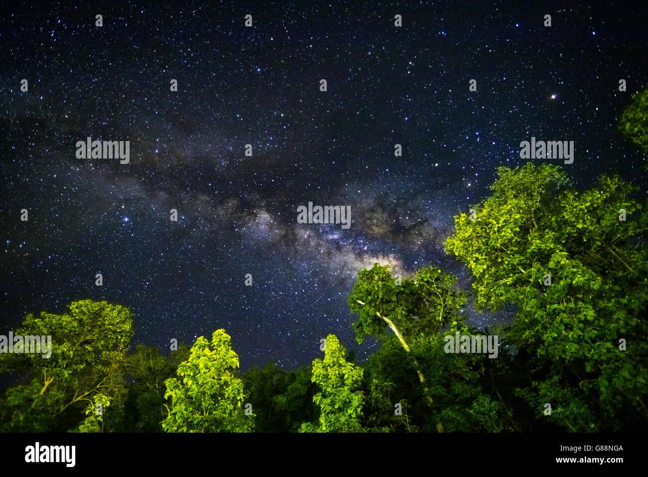 Partie d'un ciel de nuit avec des étoiles et Milky Way Photo Stock