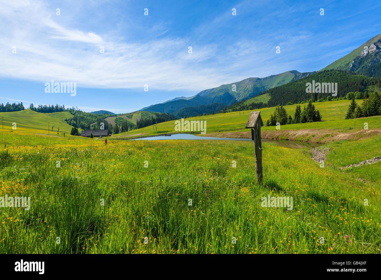 Sentier de randonnée en bois signe sur pré vert en été paysage de montagnes Tatras, Slovaquie Banque D'Images