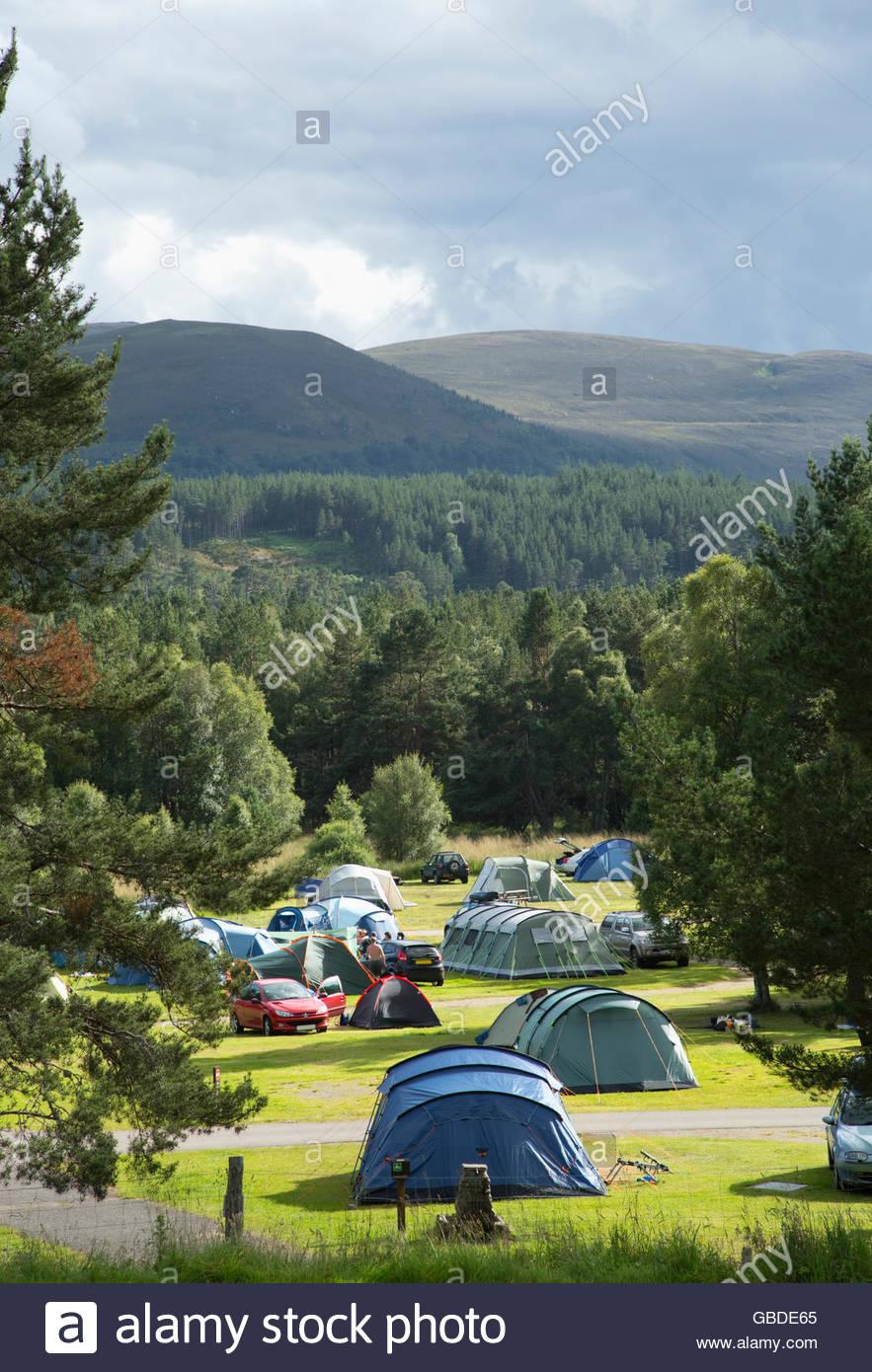 Le camping à Glenmore Forest Park près d'Aviemore, Highlands d'Ecosse. Photo Stock