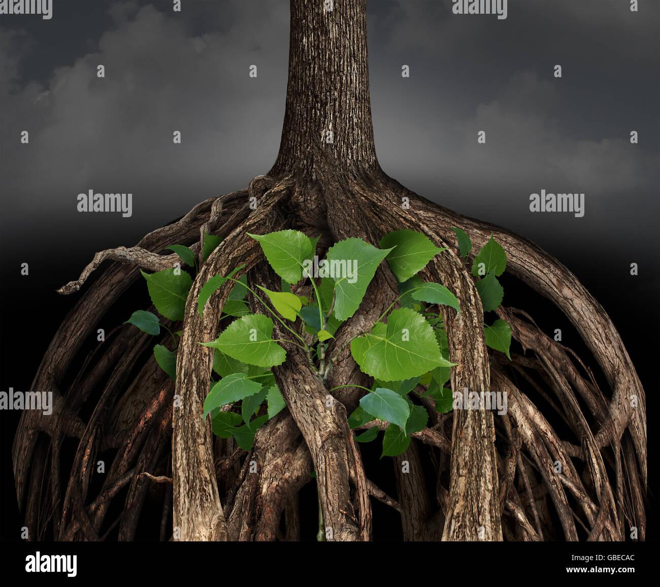 La croissance de l'entreprise difficile concept comme un grand obstacle racine de l'arborescence d'un Photo Stock