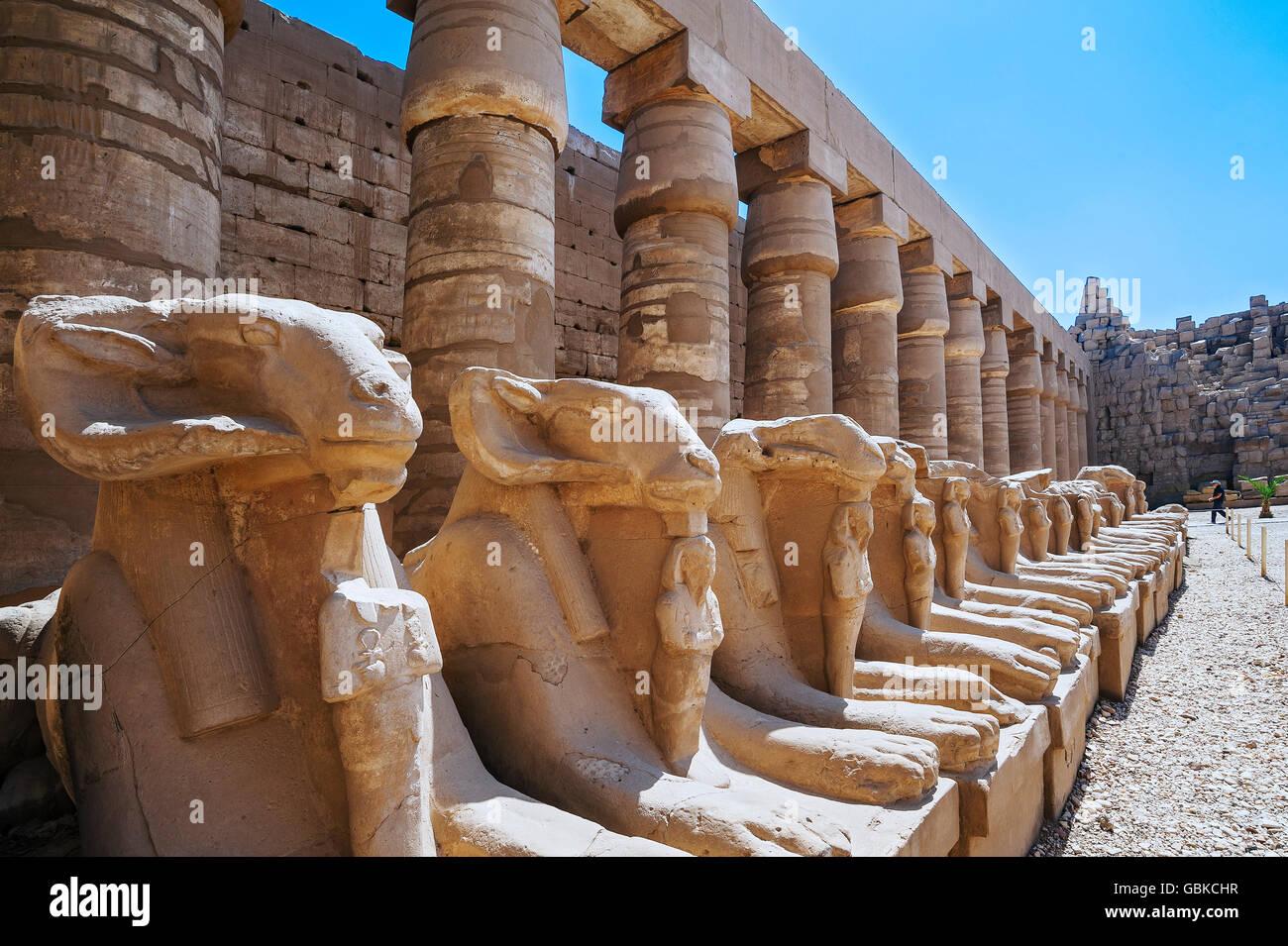 L'Avenue des sphinx à tête de bélier au Temple de Karnak, Karnak, Louxor, Egypte Photo Stock