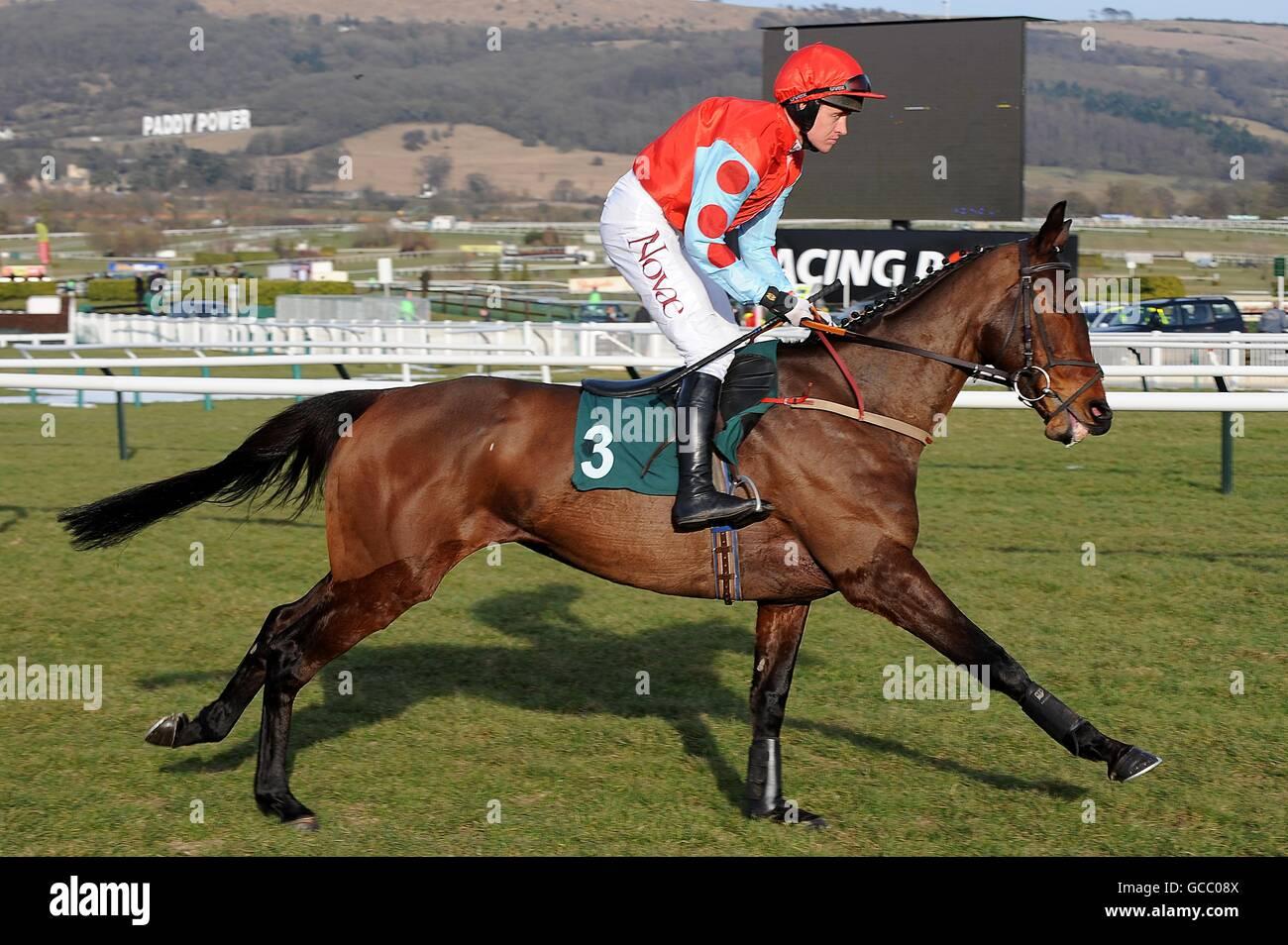 Les courses de chevaux - 2010 Cheltenham Festival - Jour 1 Photo Stock