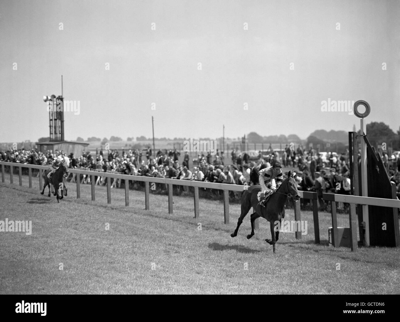 Les courses de chevaux - l'Handicap de Hamilton - Plaque Baignoire Hippodrome Photo Stock