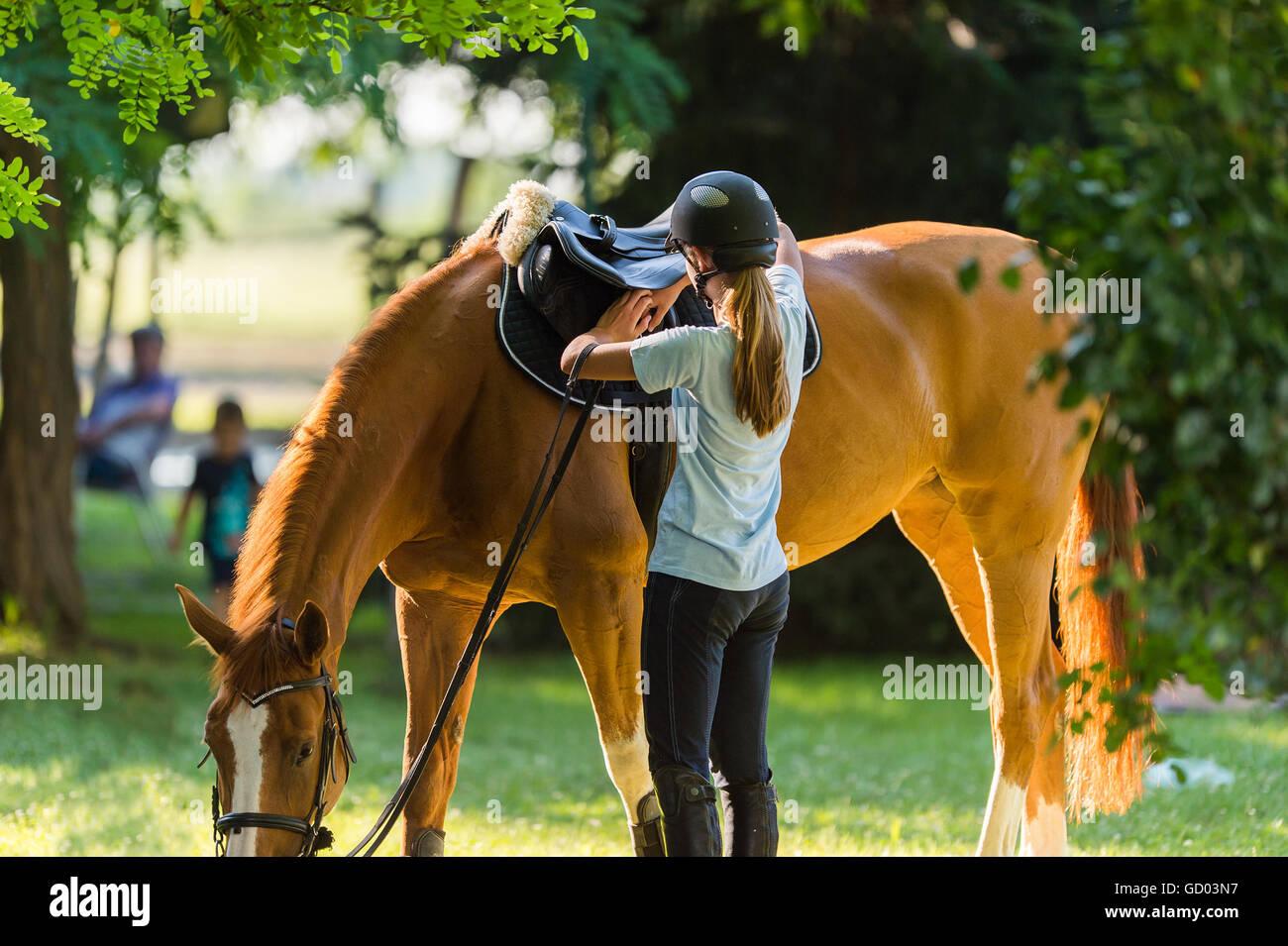 Girl riding a horse Photo Stock