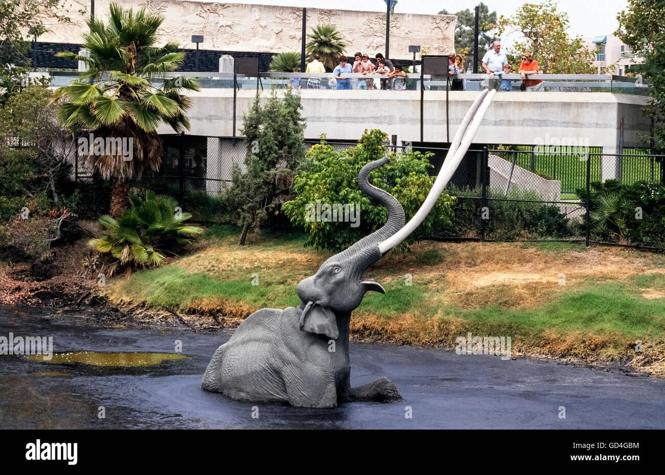 Un modèle en fibre de verre grandeur nature d'une espèce de mammouth le Pléistocène est Photo Stock