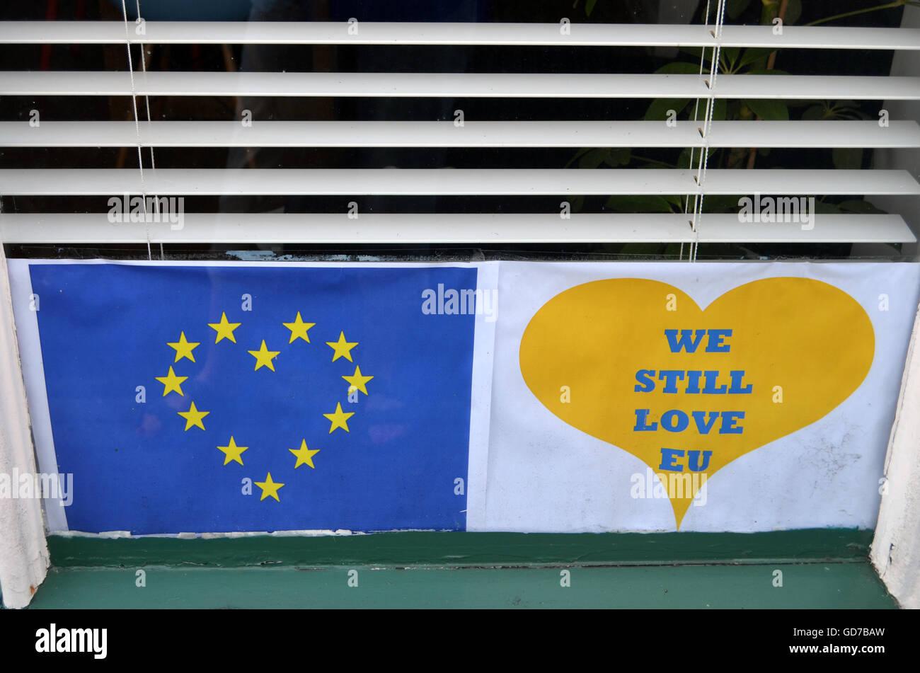 Affiches de l'Union européenne Pro après référendum Brexit, Norfolk Juin 2016 UK Photo Stock
