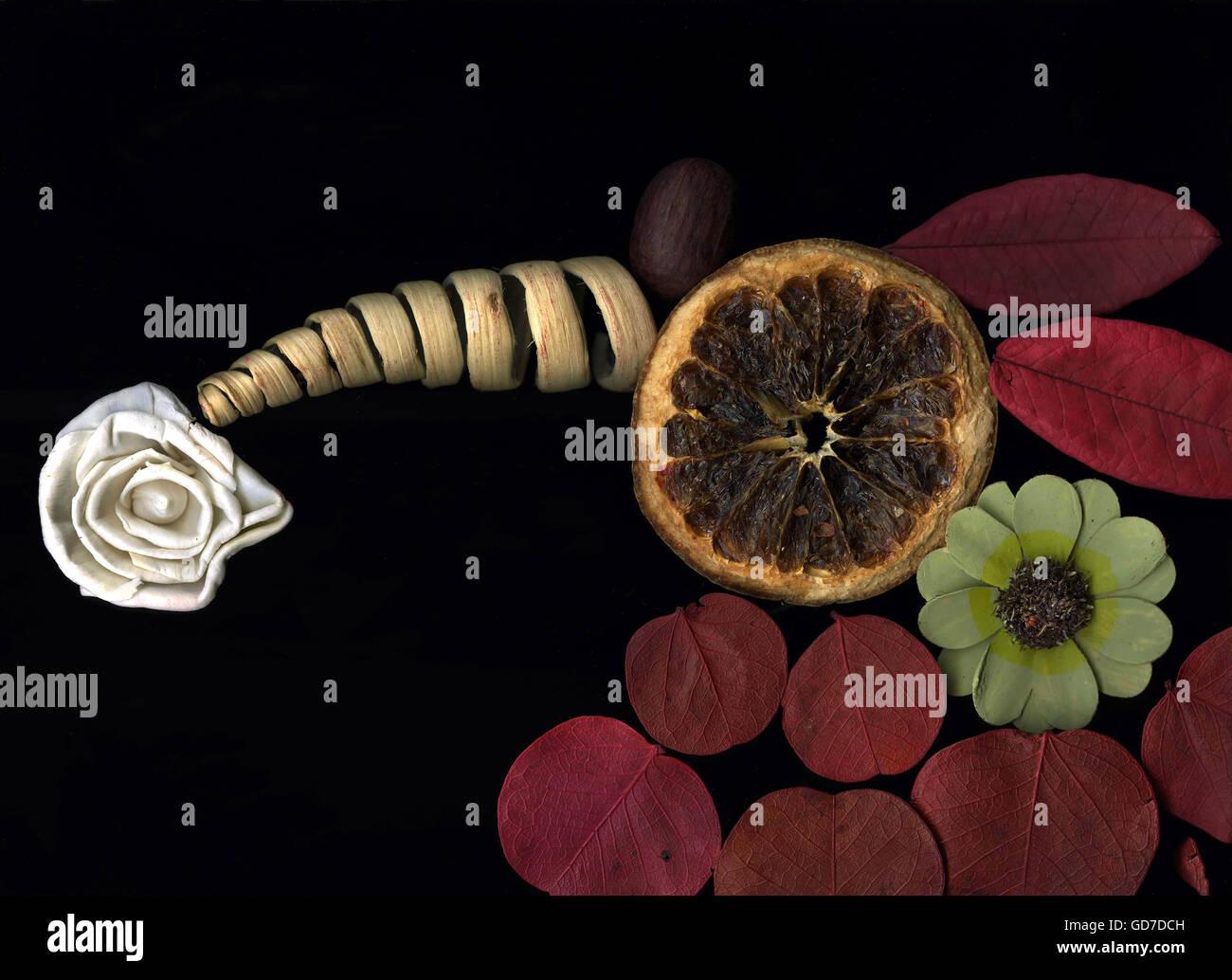 Fleurs et feuilles aromatiques séchées composition Photo Stock