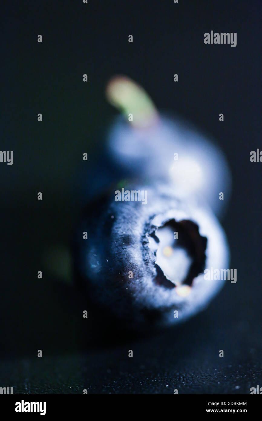 Blueberry isolés Photo Stock