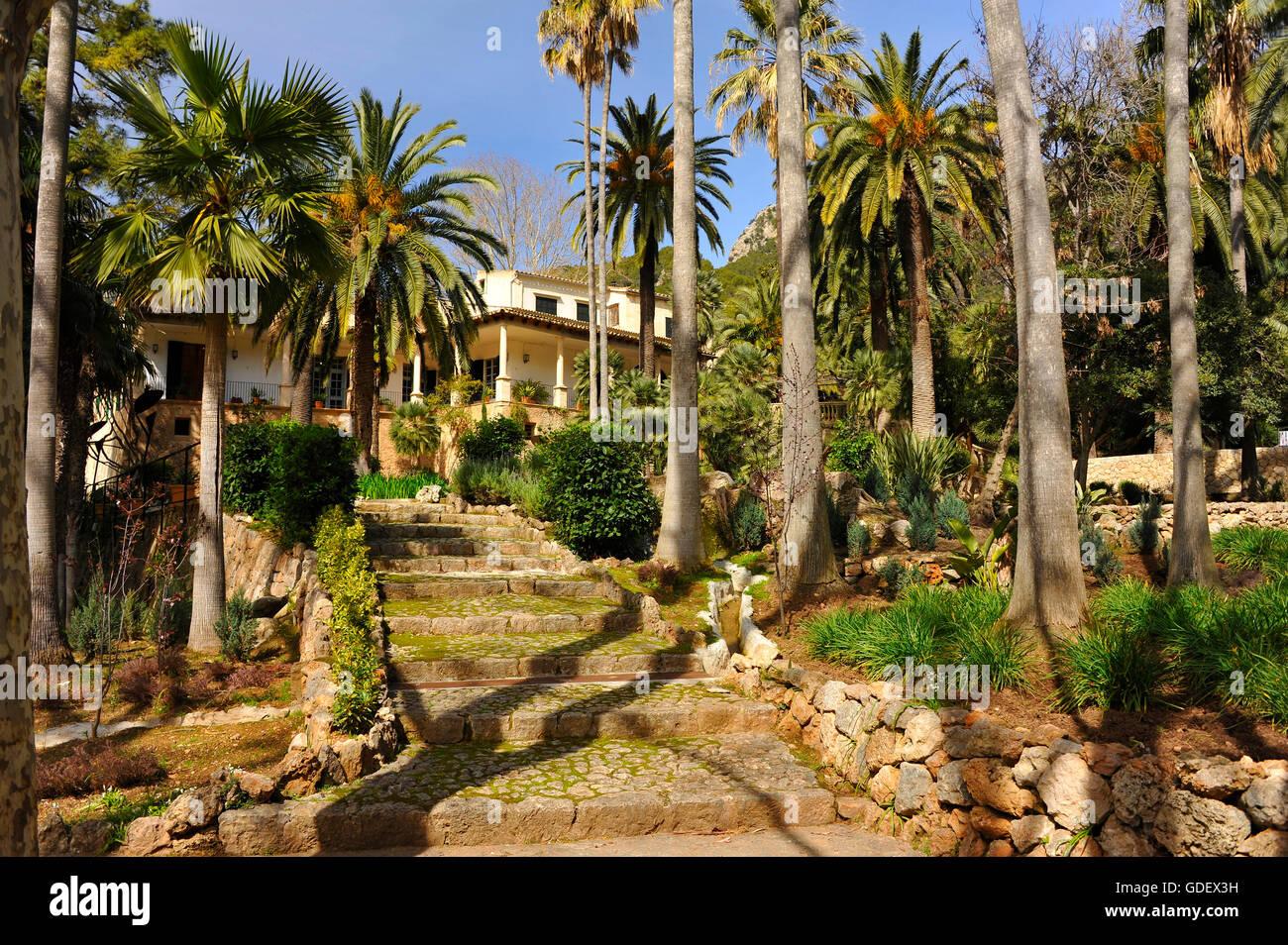 Manor House Jardin Arabe Jardins Dalfabia Bunyola Majorque - Jardin-arabe