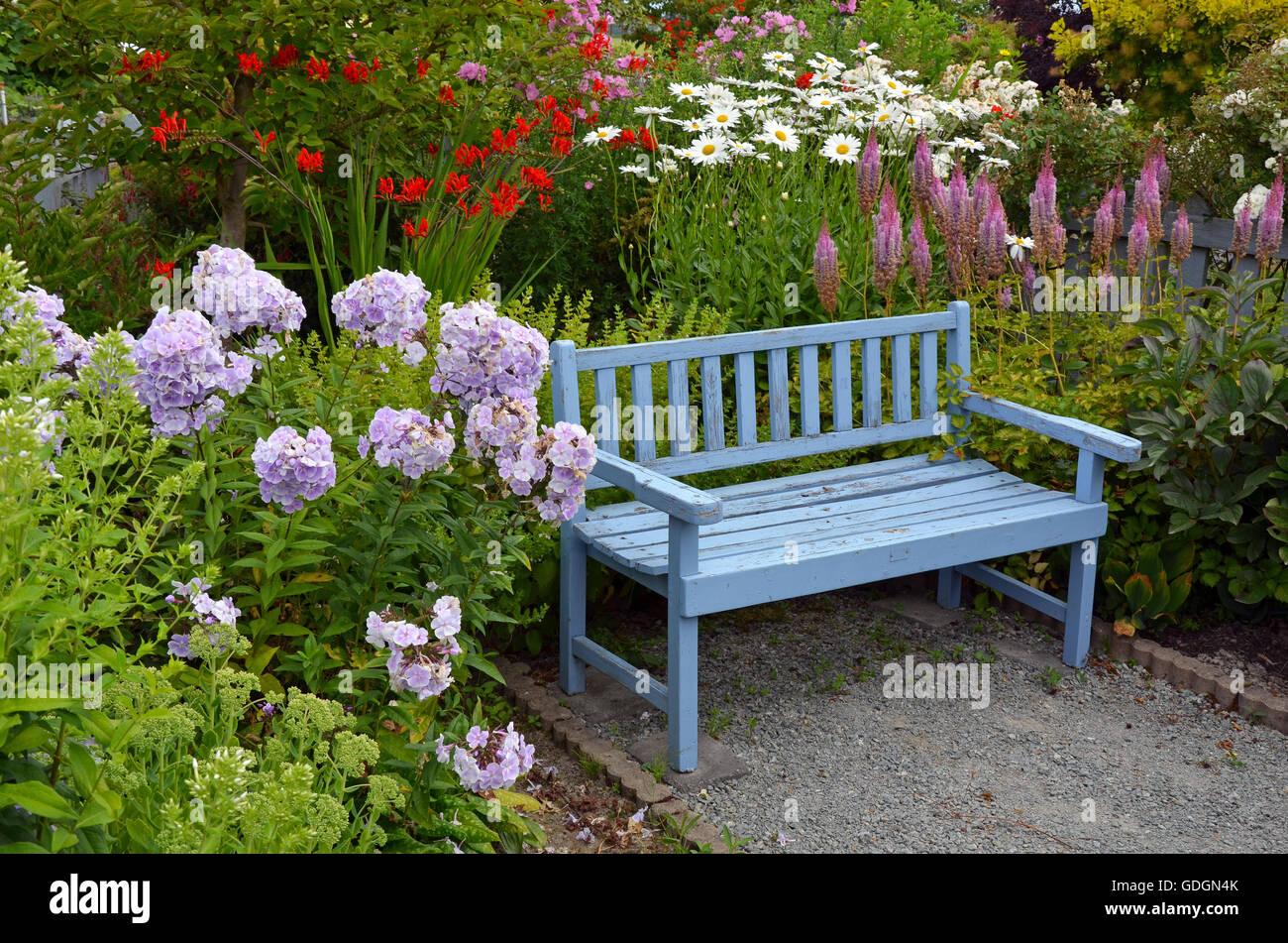 Banc de jardin en bois ancien bleu dans le jardin d\'été ...