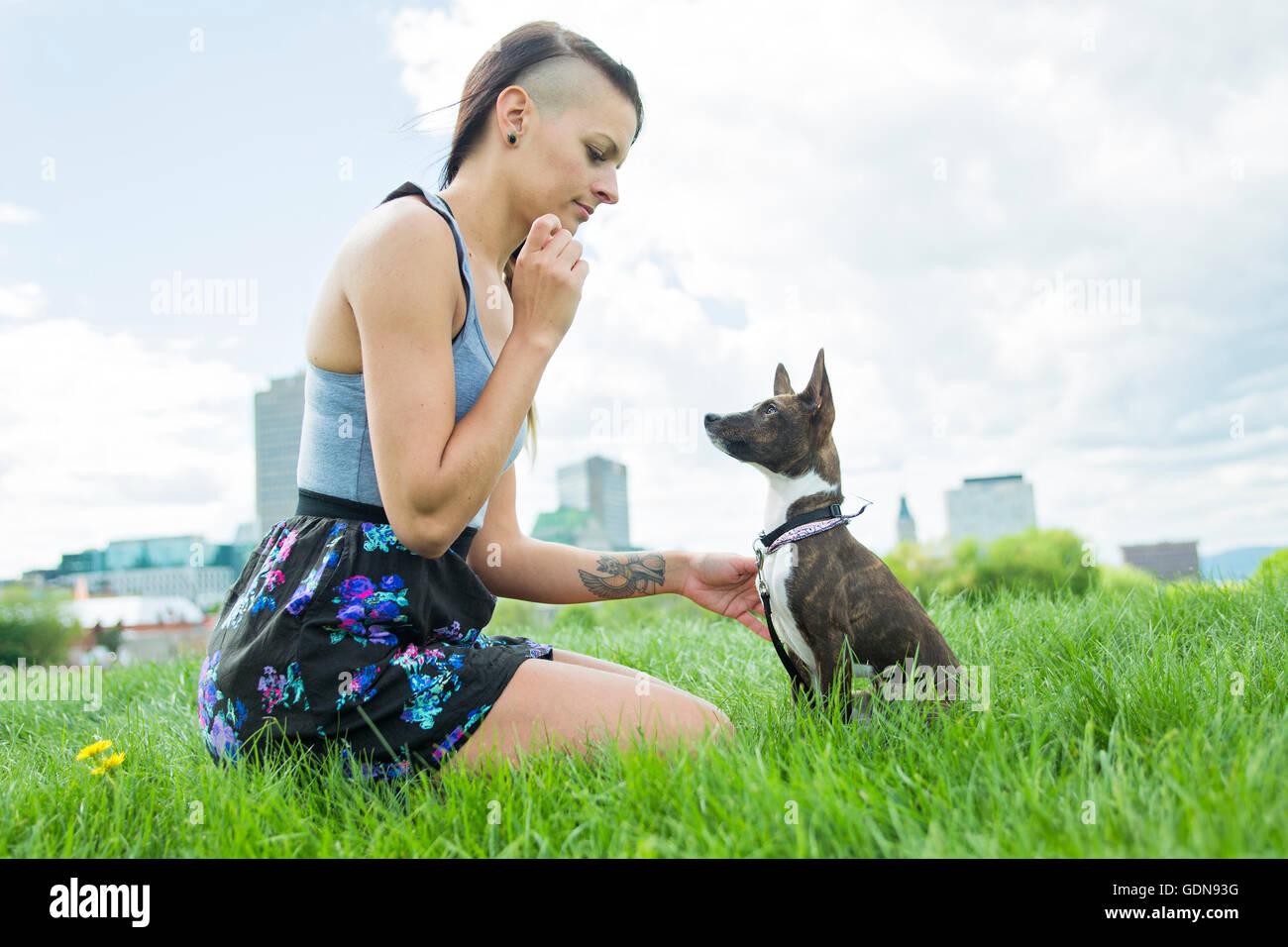 Fille avec un chien dans le parc Photo Stock
