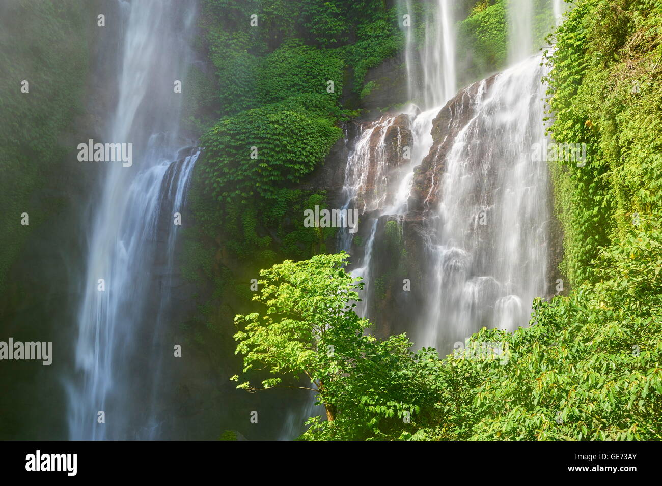 Bali, Indonésie - Cascade de Sekumpul Photo Stock