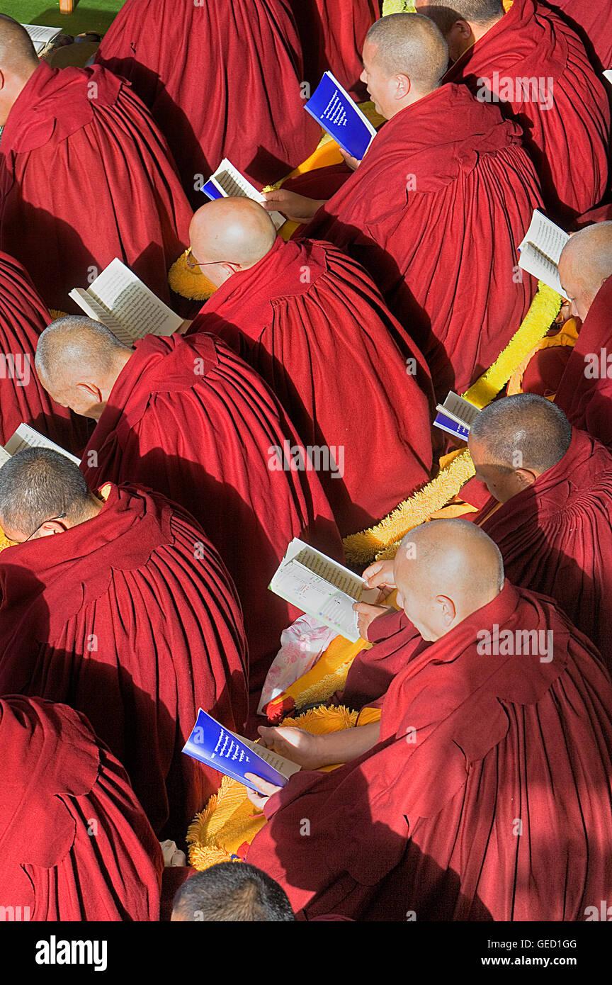 Au cours de la prière des moines,Puja le Losar, le nouvel an en monastère de Namgyal,dans Tsuglagkhang Photo Stock