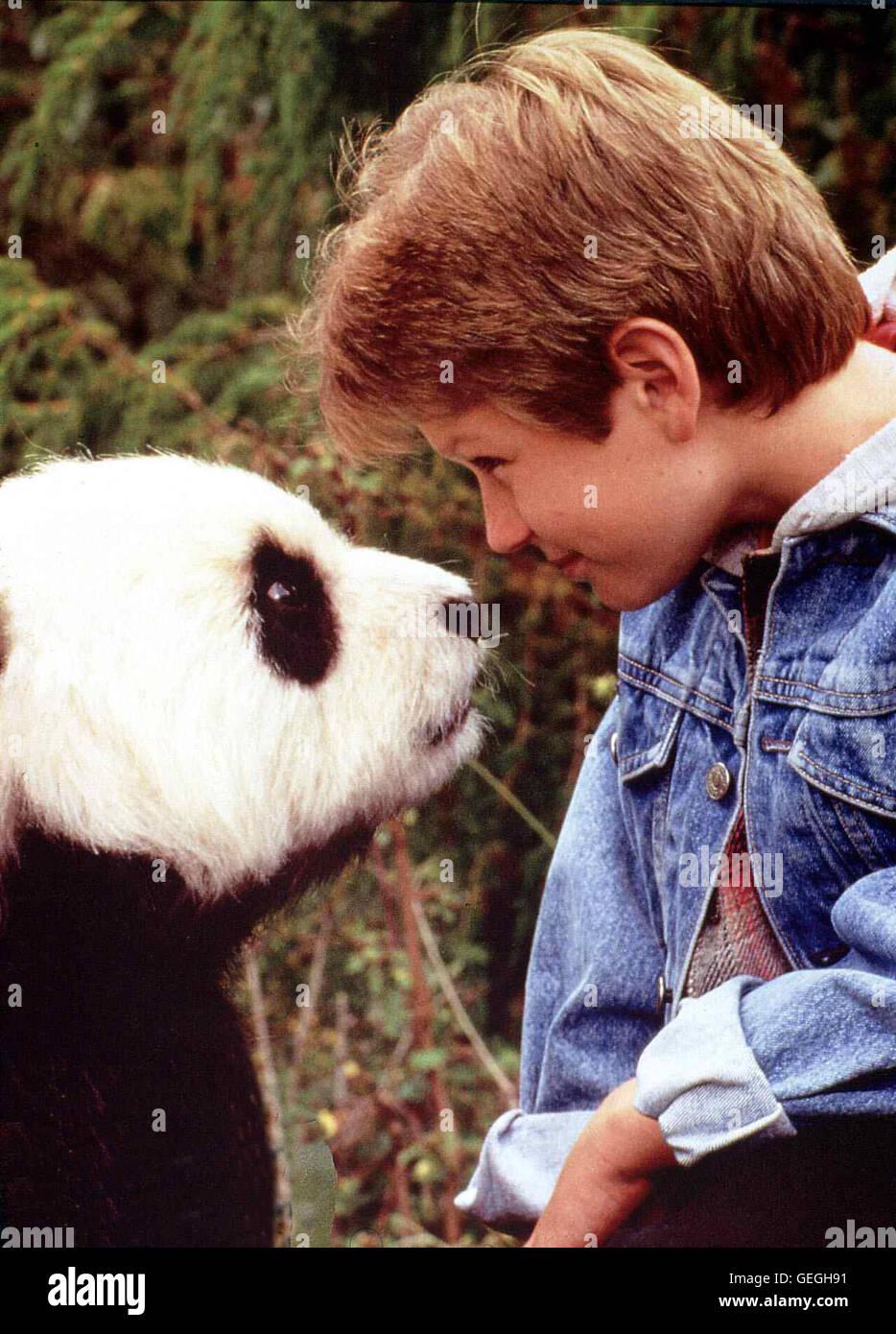 Ryan Ryan Slater (Tyler Ryan Slater) verbringt seine Schulferien in einem chinesischen Reservat, wo arbeitet als Vater sein Biologe, um einen idealen La société fuer die letzten Pandabaeren zu schaffen. *** *** Légende locale 1995, Amazing Panda Adventur Banque D'Images