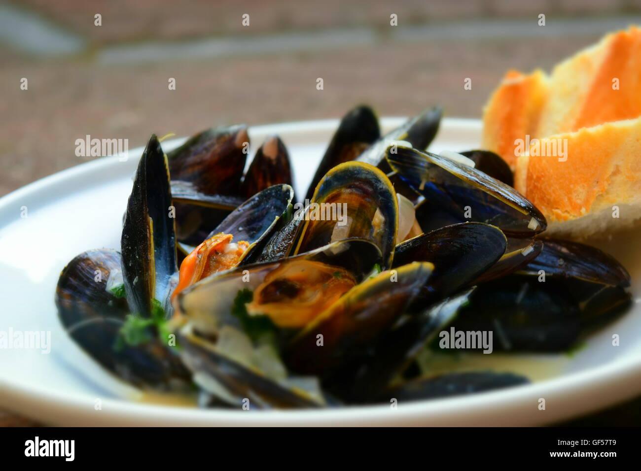 Moules au dîner. Photo Stock