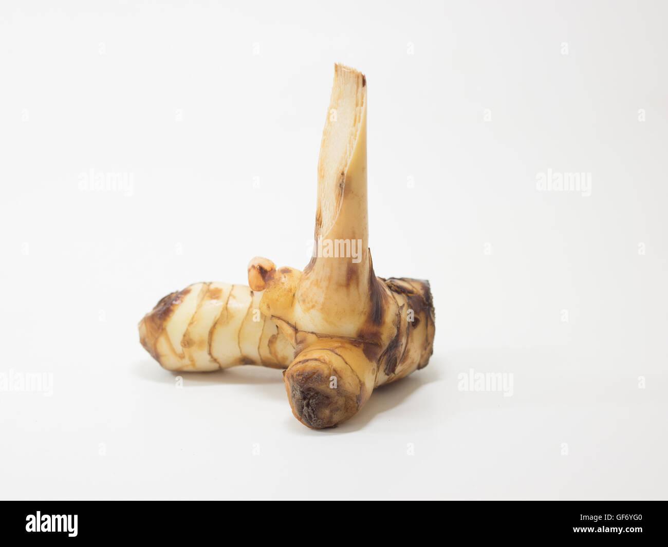 Plantes médicinales Herbes ingrédients épices aromatisantes assaisonnement alimentaire galanga rhizome Photo Stock