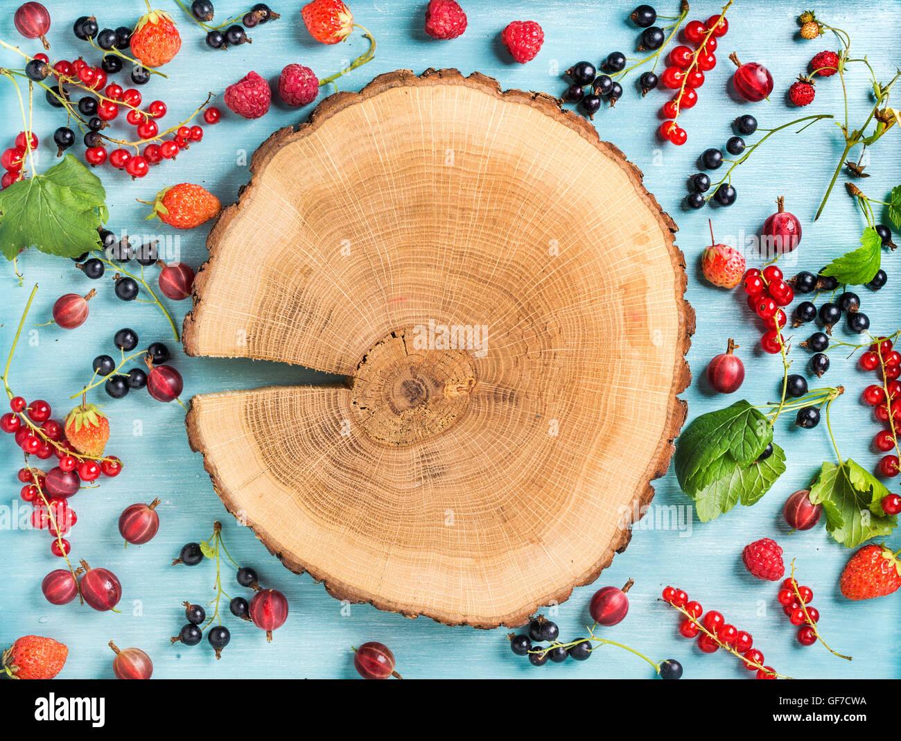 Jardin d'été en bonne santé berry variété. Noir et rouge groseille, framboise, groseille, Photo Stock