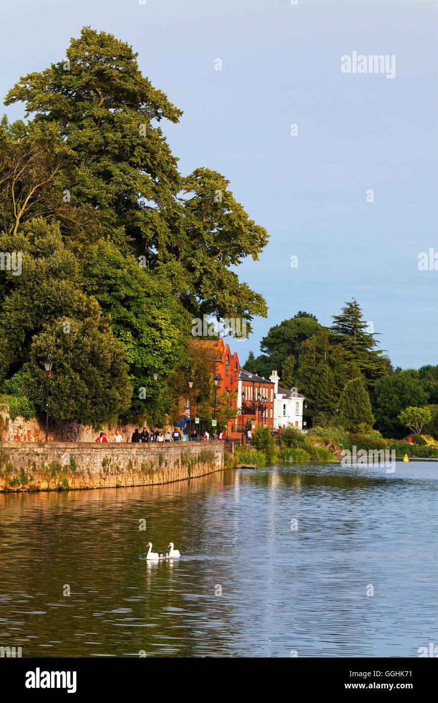 Quay le long de la rivière Exe, Exeter, Devon, Angleterre, Grande-Bretagne Banque D'Images
