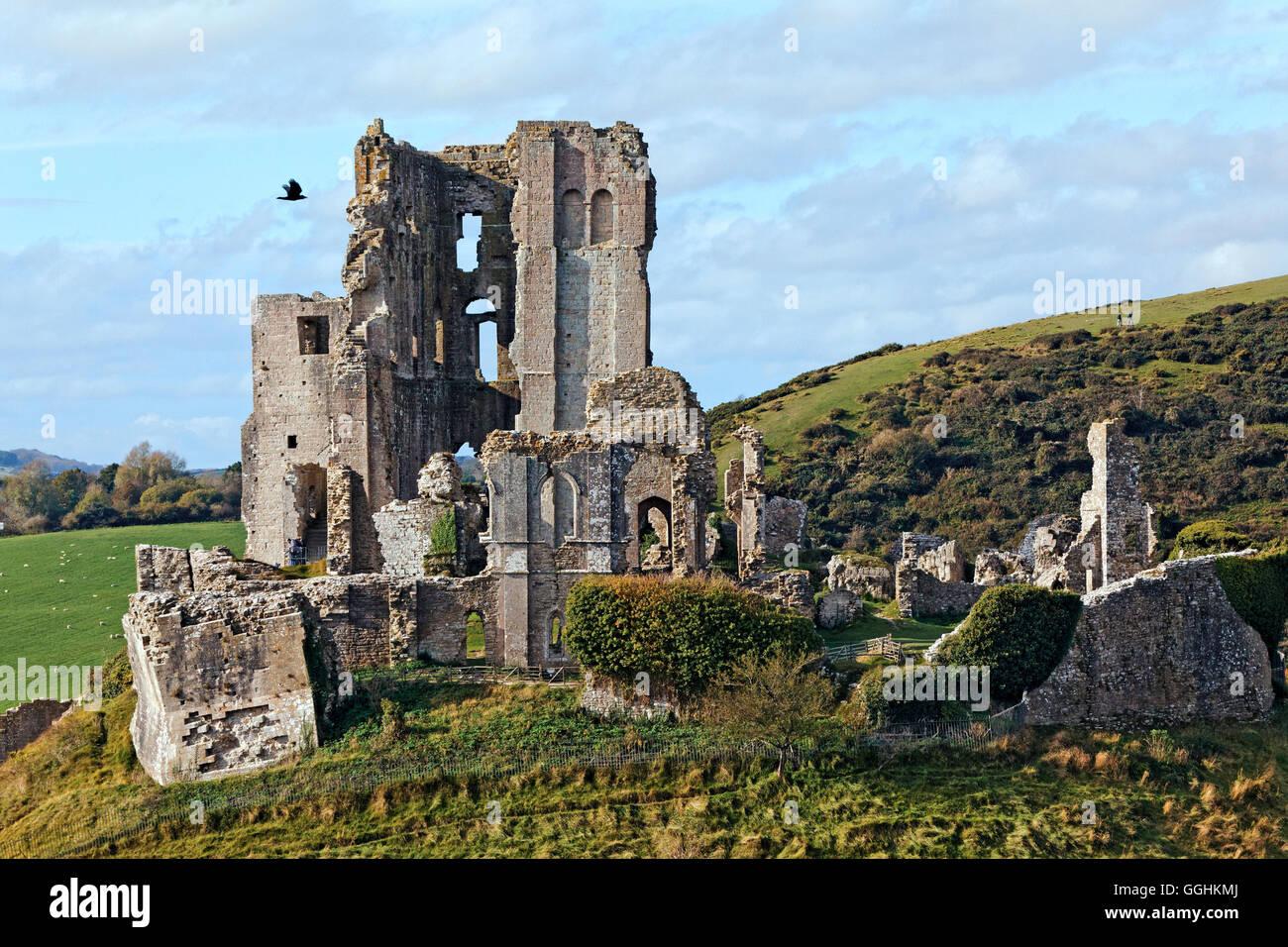 Château de Corfe, Dorset, Angleterre, Grande-Bretagne Photo Stock