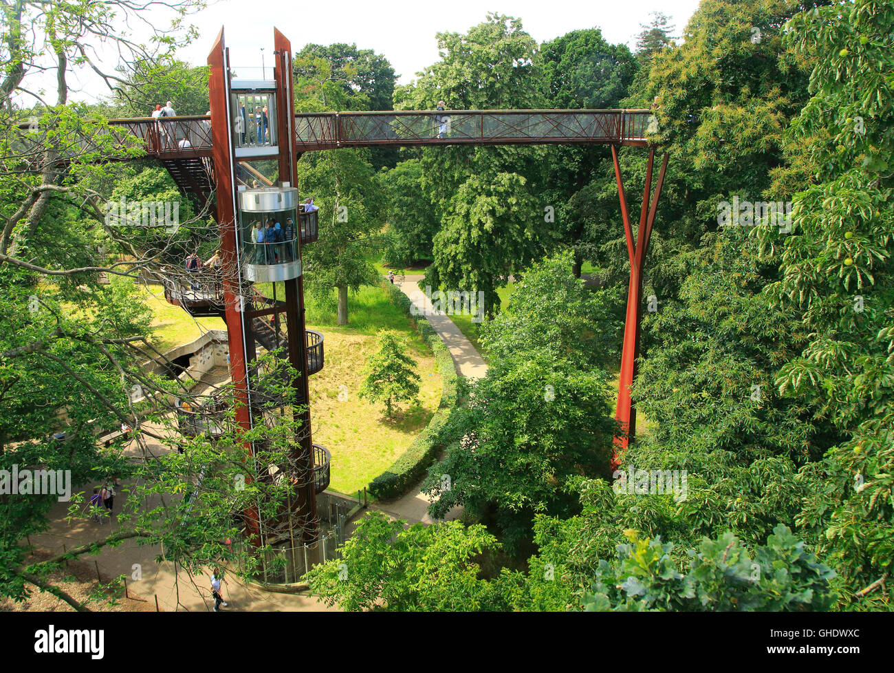 Xstrata Treetop Walkway, Royal Botanic Gardens, Kew, Londres, Angleterre, Royaume-Uni Photo Stock