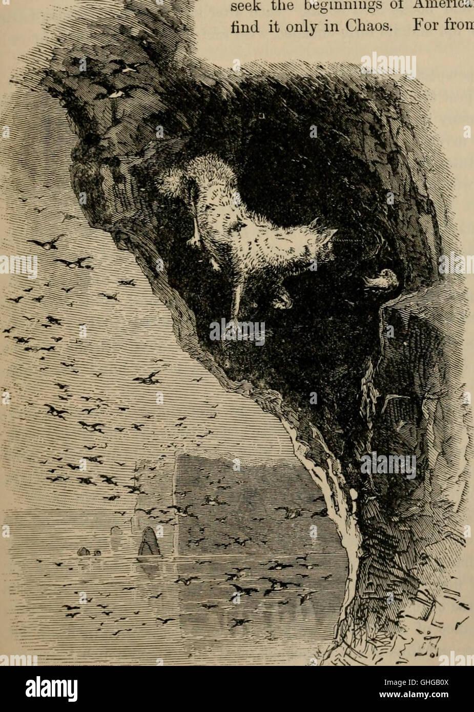 Clé d'oiseaux de l'Amérique du Nord. Contenant des indications succinctes sur chaque espèce d'oiseau vivant et fossile connu à l'heure actuelle du continent au nord de la frontière du Mexique et des États-Unis, y compris Banque D'Images