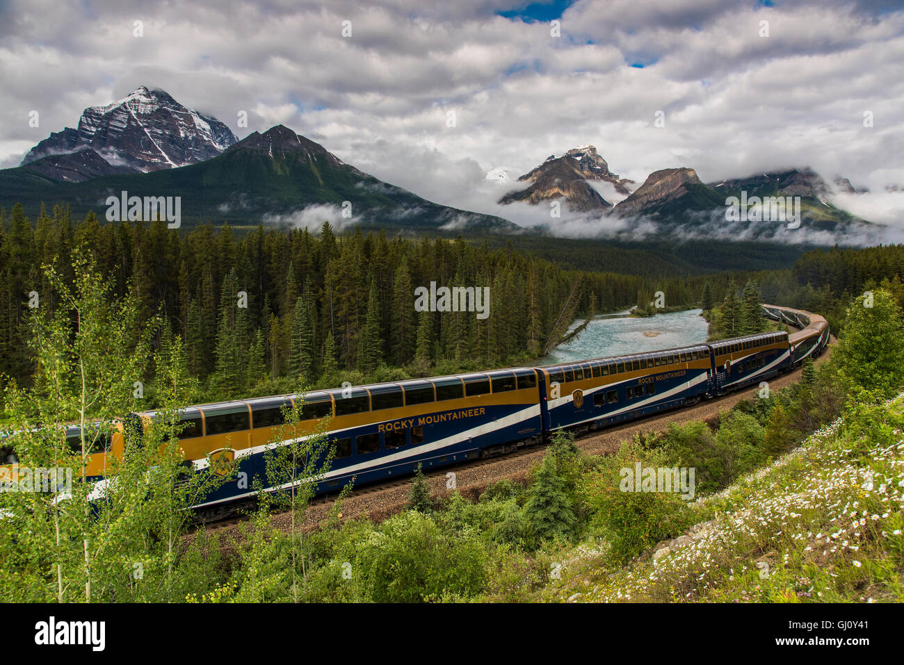 Rocky Mountaineer train de voyageurs à Morant's Curve, Banff National Park, Alberta, Canada Photo Stock