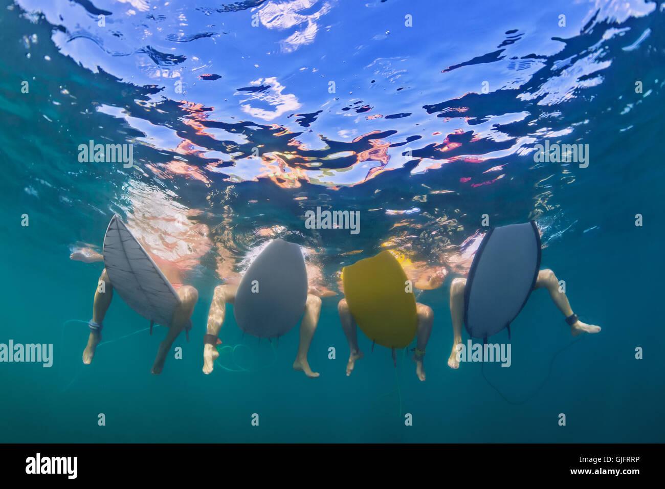 Les jeunes filles en bikini surf actif - surfers s'asseoir sur des planches de surf, attendre grand océan Photo Stock
