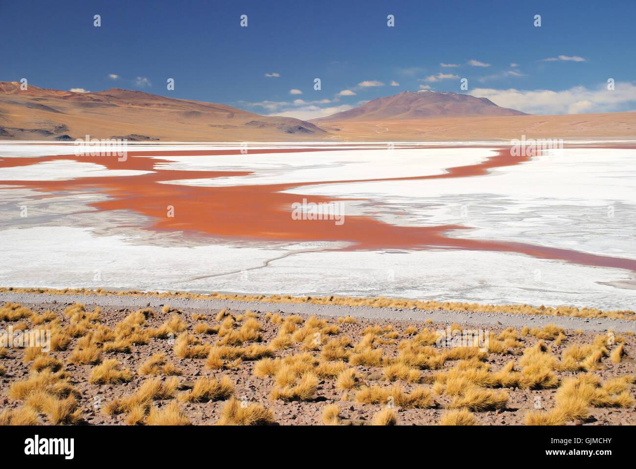 Lagune de sel de l'eau fraîche Banque D'Images