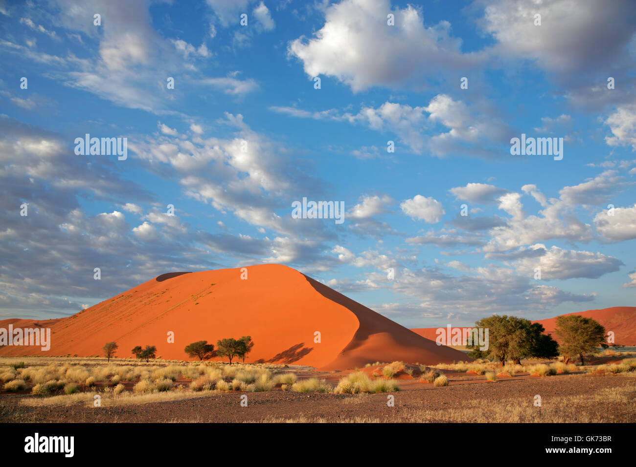 Désert désert namibie Photo Stock