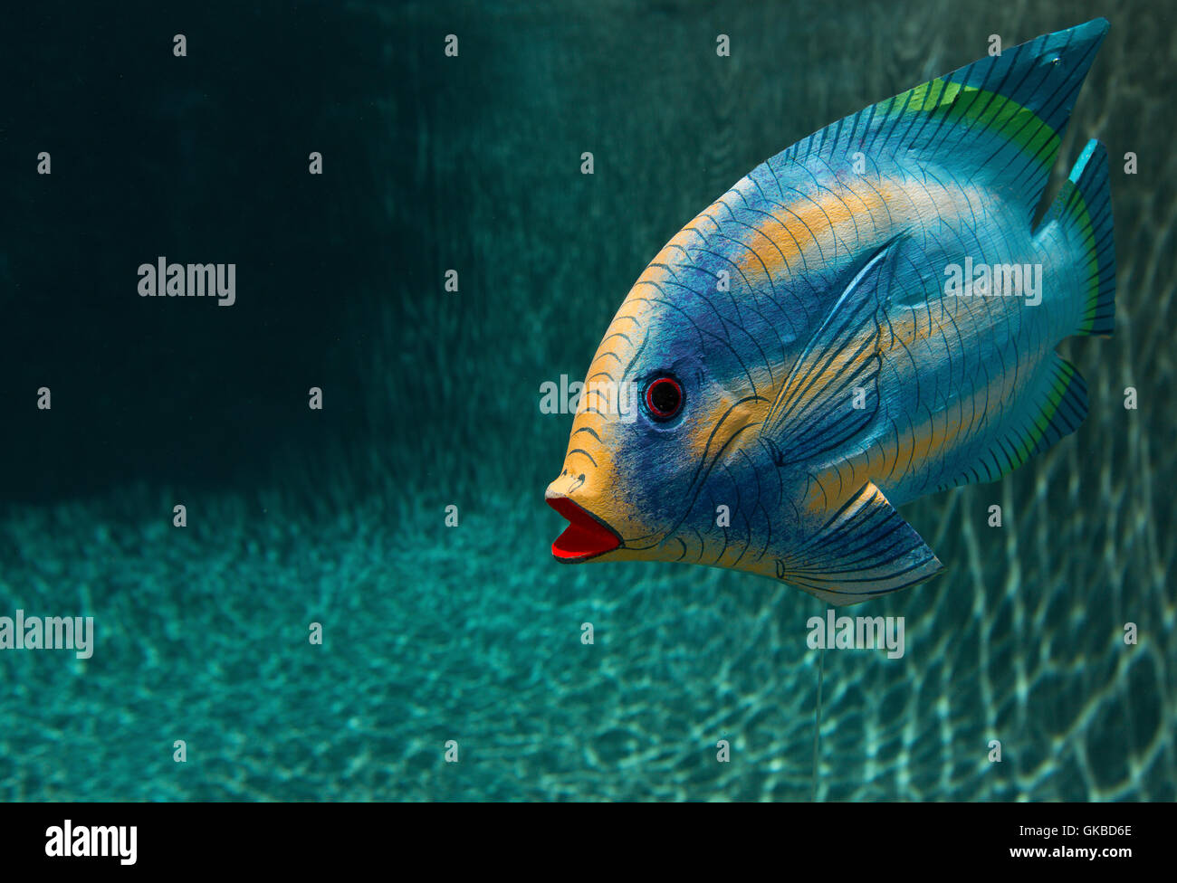 Poisson en bois dans une piscine à Virginia Beach, VA Photo Stock