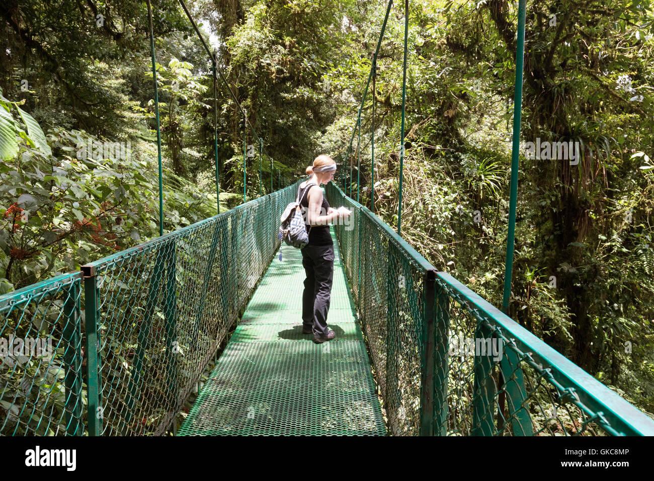 Touriste marcher sur un pont couvert, Monteverde Cloud Forest Reserve, Monteverde, Costa Rica, Amérique Centrale Banque D'Images