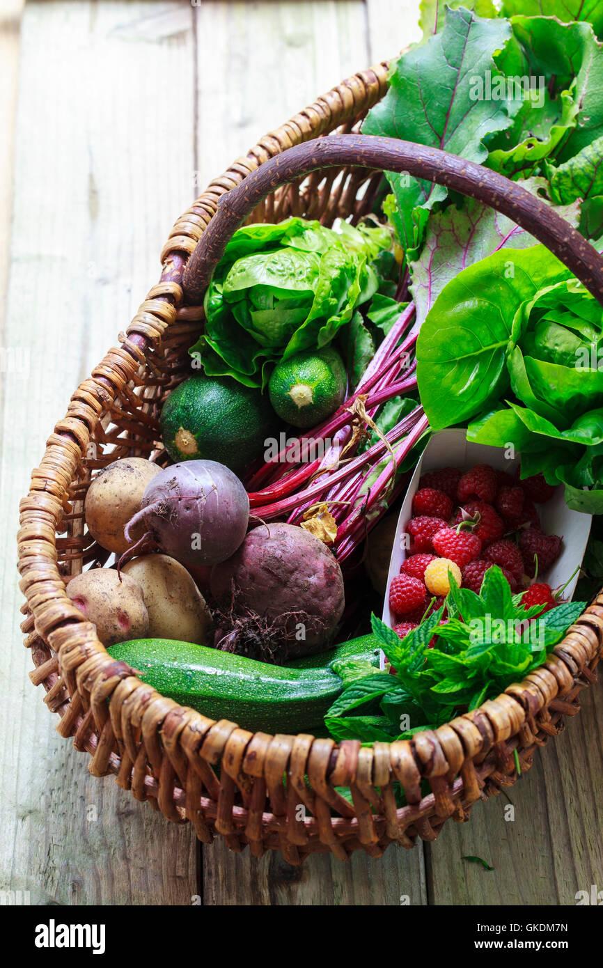 Panier avec produits du jardin fraîchement cueillies Photo Stock