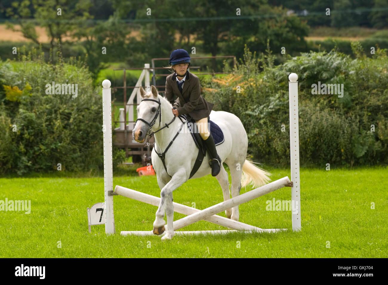 Saut d'adolescente sur son Llanigon à poney Show 2016 YFC nr Hay-on-Wye Powys Pays de Galles UK Photo Stock
