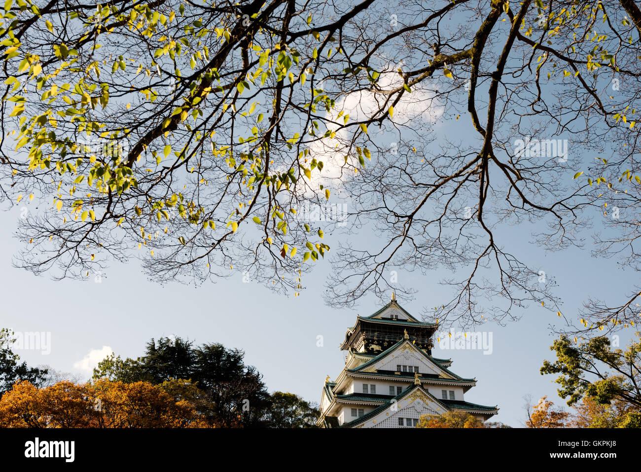 Osaka, Japon - 11 novembre 2015: la ville d'Osaka. Le Château d'Osaka est visible sur le côté droit. Banque D'Images