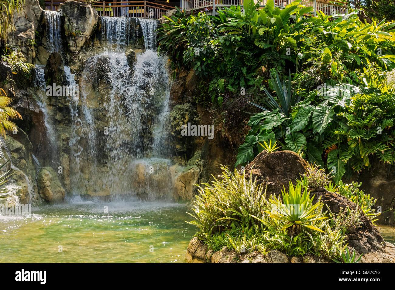 Cascade de jardin botanique de Balata Guadeloupe Antilles Banque D'Images