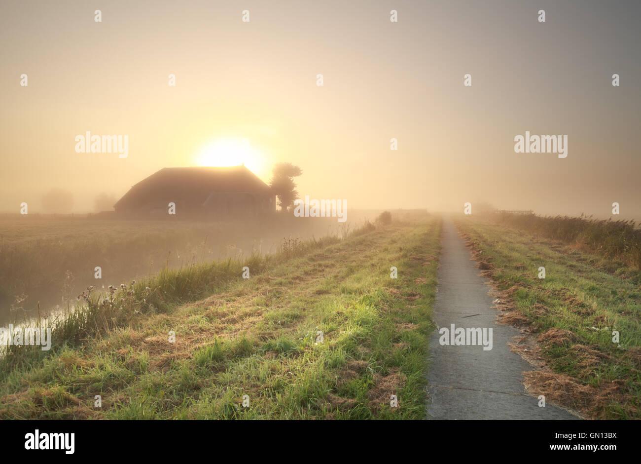 Terres agricoles à misty sunrise, Pays-Bas Photo Stock