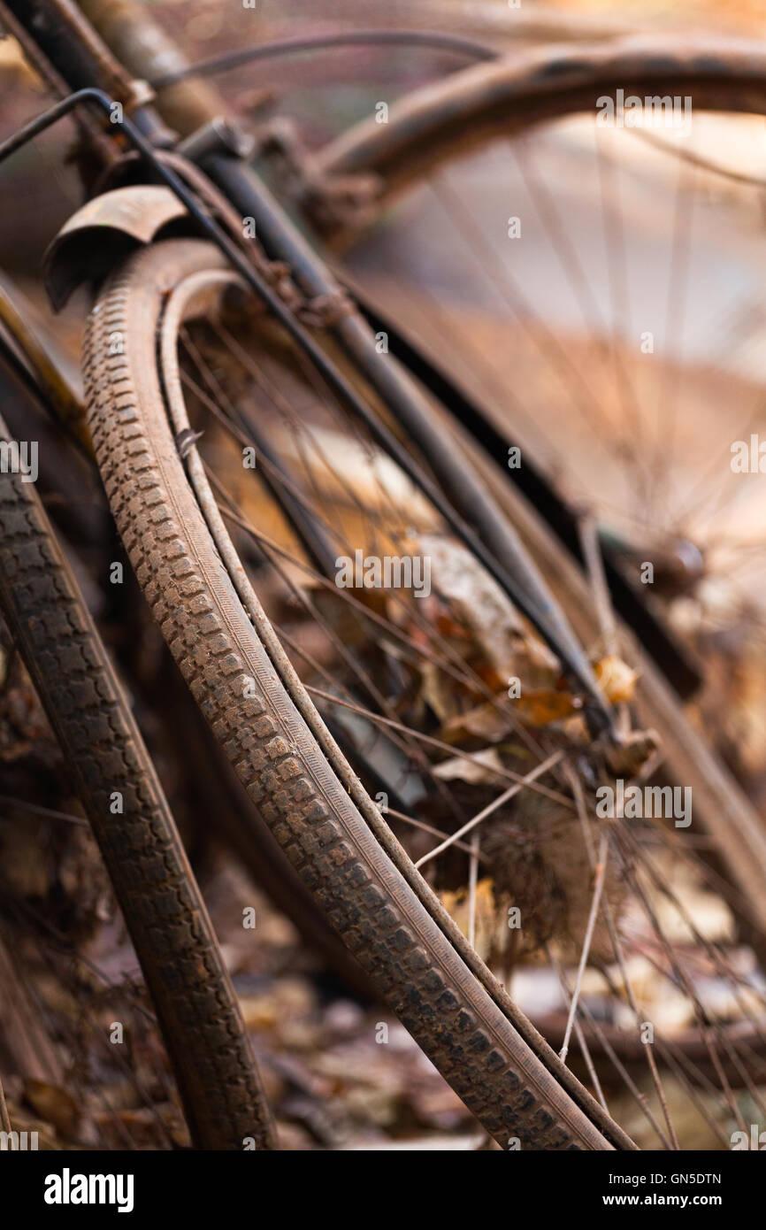 Vieille roue de bicyclette Photo Stock