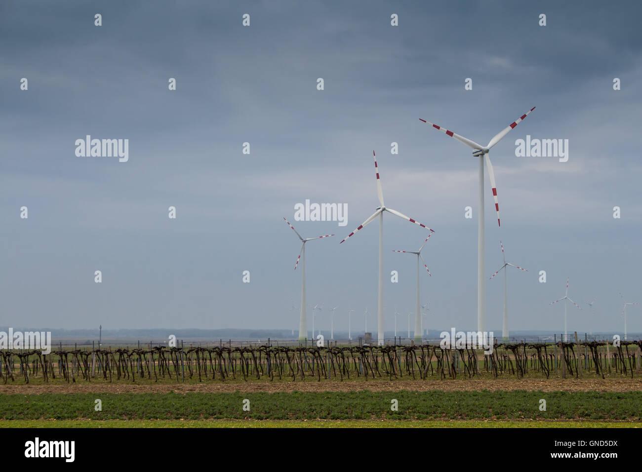 Wind turbine et un champ au début du printemps à Berg, en Autriche. Ciel 9fc3ffb83389