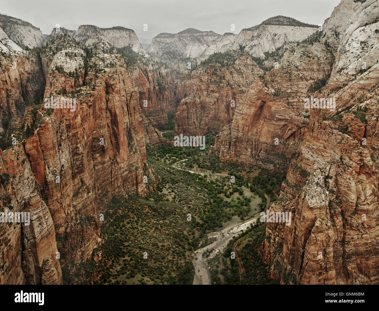 L'affût du haut d'Angel's Landing dans Zion National Park Photo Stock