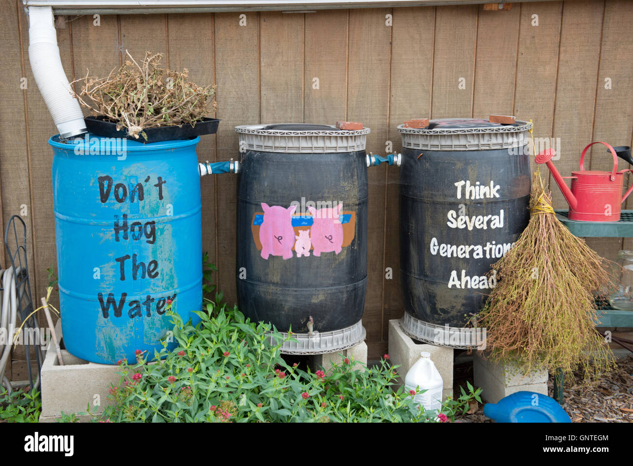 Collection de barils de pluie peint avec des rappels de la conservation de l'eau Photo Stock