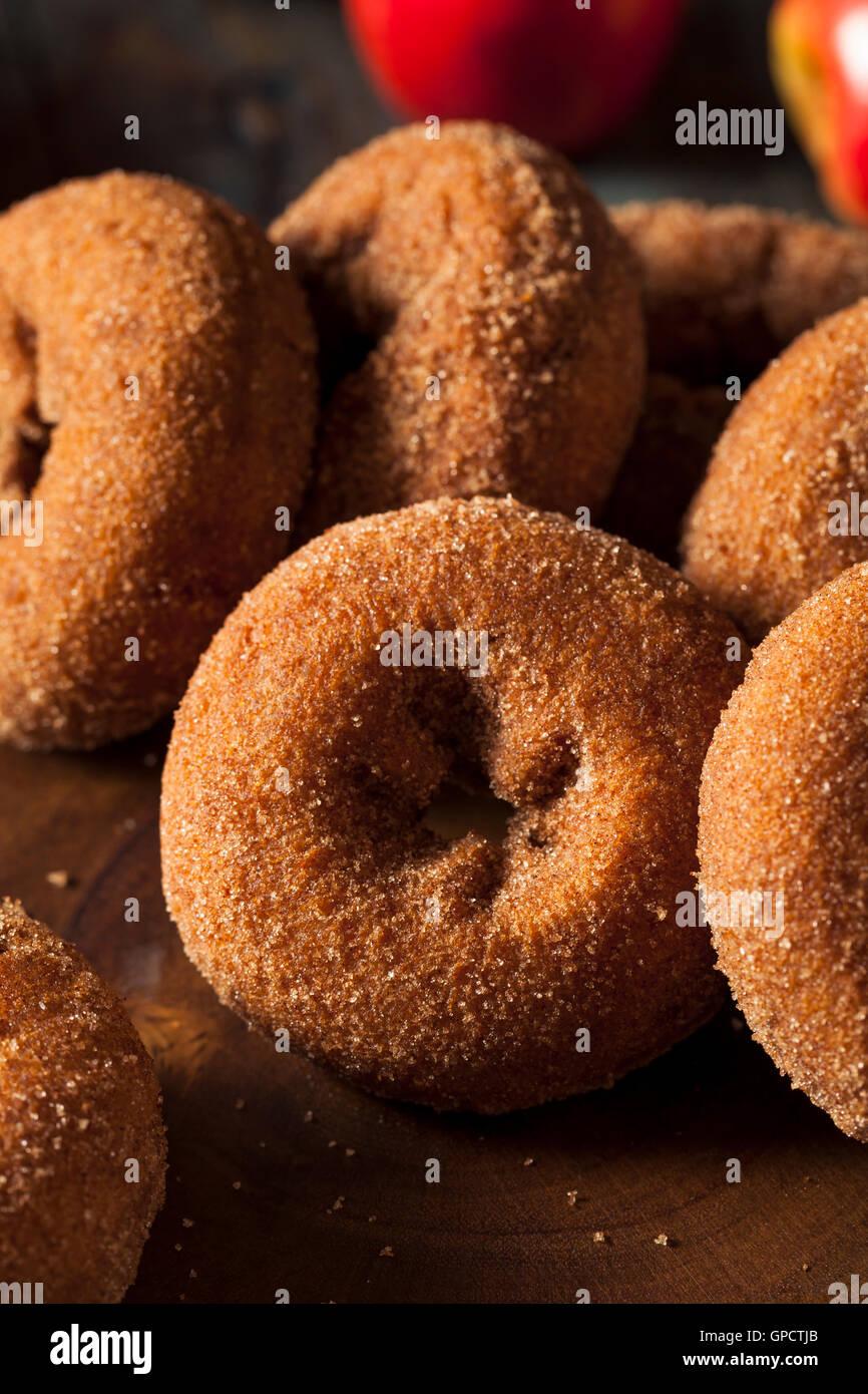 Des beignets de pomme sucrée à la cannelle Photo Stock