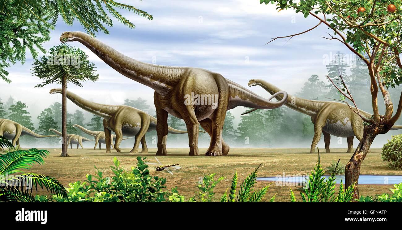 Un groupe de l'Argentinosaurus dinosaures pâturage sur les arbres et les feuilles Banque D'Images