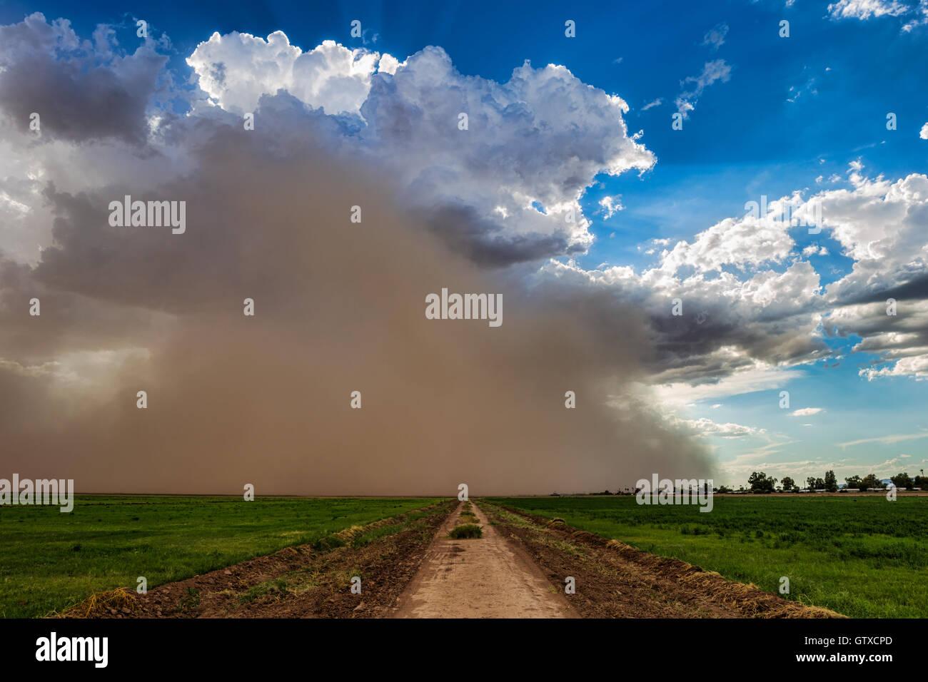 Tempête de poussière de la mousson approche de Phoenix, Arizona Banque D'Images