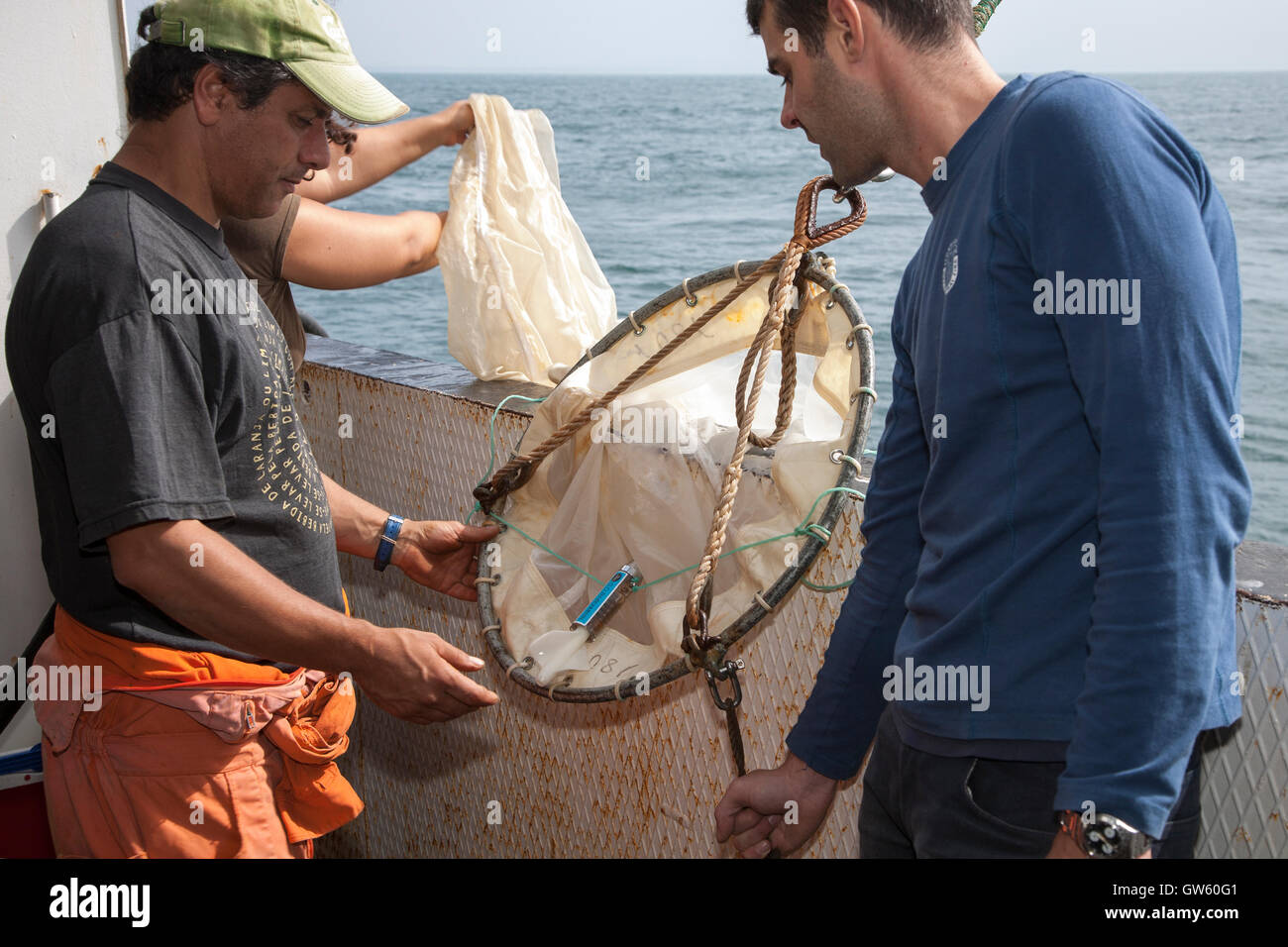 Récupération de filet à plancton. Le réseau lui-même est terminé dans une bouteille ou pot (cul) où le plancton est recueillie non filtrée Banque D'Images
