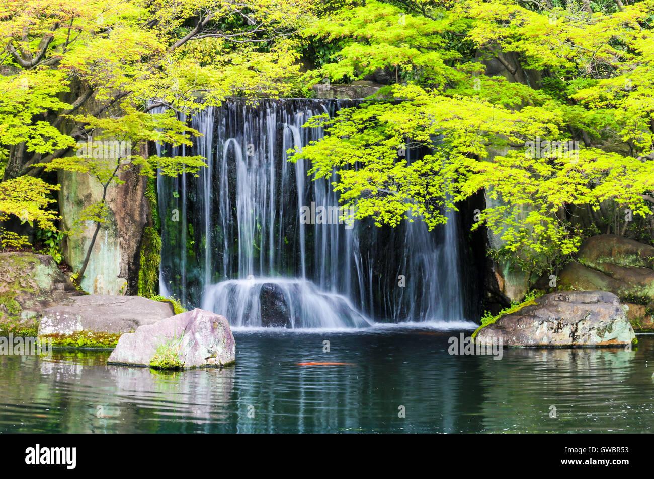 Bassin De Jardin Zen Avec Cascade Et Poissons Carpe Au Japon