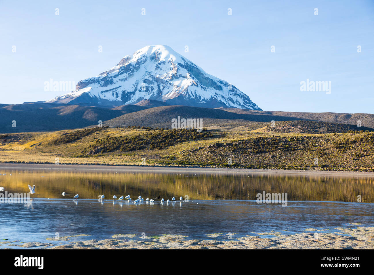 Huayñacota volcan Sajama et le lac, dans le Parc Naturel de Sajama. La Bolivie Photo Stock